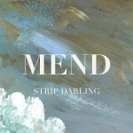 mend strip darling